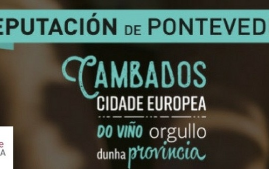 Presentation of Cultiva Decisiones in Pontevedra